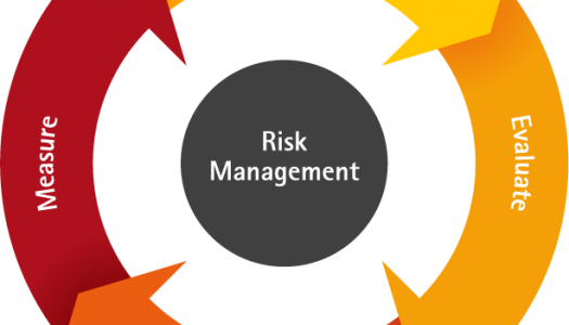 Risk Management Plan – Tet 2020